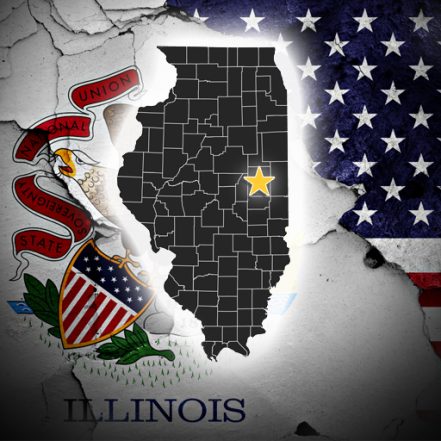 State of Illinois FS